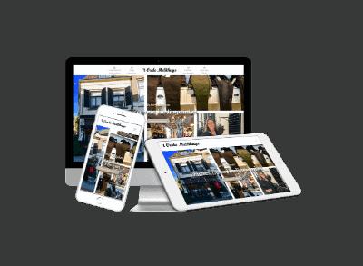 WordPress website winkel Zutphen